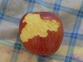 りんご好きかも