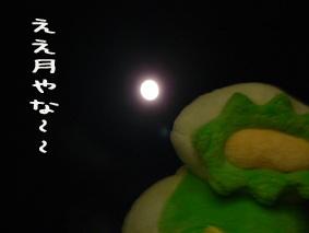月とかっぱ先生