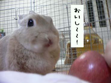 もっと食べる〜