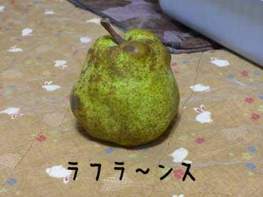 ラフラ〜ンス