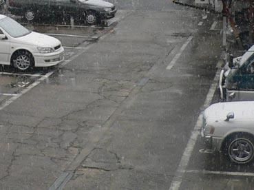 粉雪が降ってます