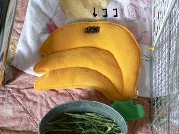 バナナのおざぶ