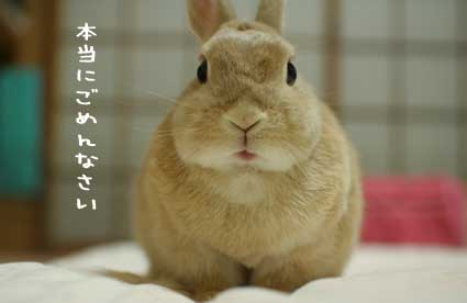 ショックやわ〜