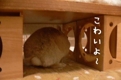 2013.4.13.1.jpg