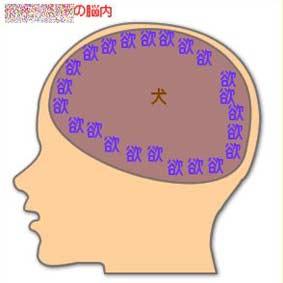 こむぎの脳内イメージ